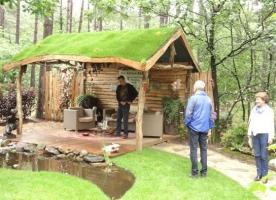 Wat is een groen dak en hoe start ik met een groendak?